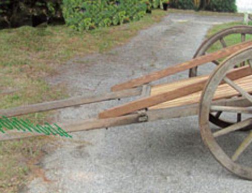 Is that a Wooden Rickshaw?