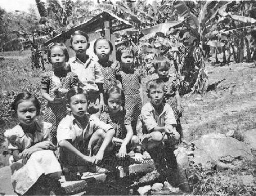 Visiting a banana plantation